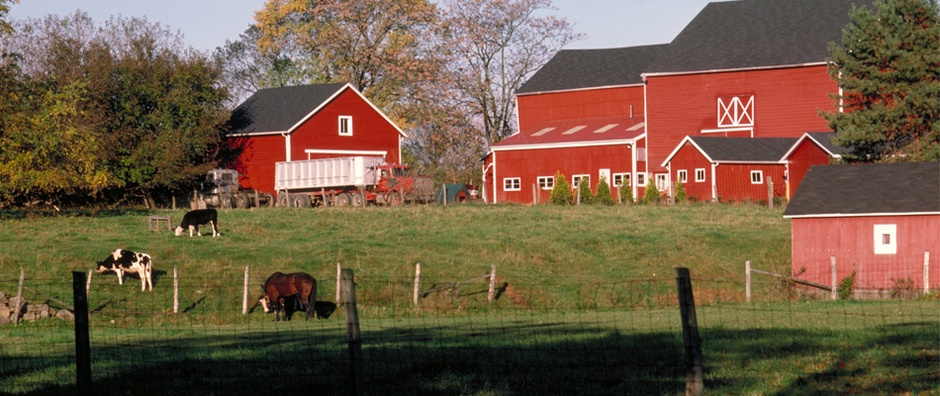 farm houses banner image